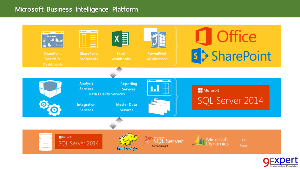 Microsoft Business Intelligence Platform