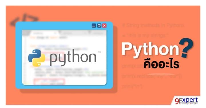 Python Programming Course