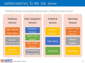 องค์ประกอบต่าง ๆ ใน MS SQL Server