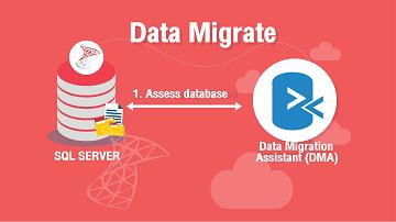 Data Migrate
