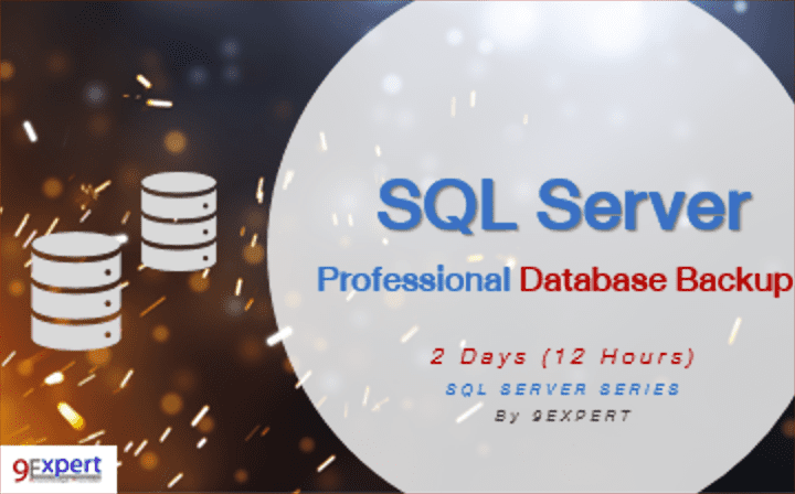 Professional SQL Server Database Backup Course