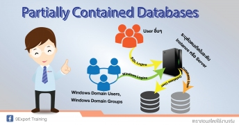 Partially Contained Database
