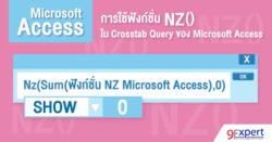 การใช้ฟังก์ชัน NZ  ใน Crosstab Query ของ Microsoft Access