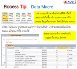 AccessTip Data Macro