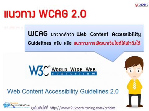 แนวทาง WCAG 2.0