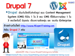 Drupal 7 เป็น CMS