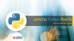 ภาษาโปรแกรม Python คืออะไร ?