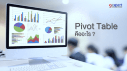 Pivot Table คืออะไร