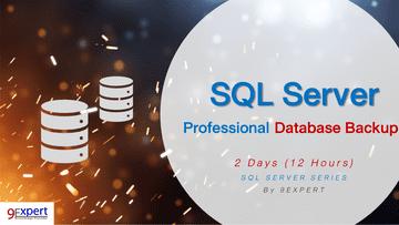 Professional SQL Server Database Backup Course