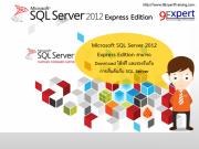 SQL Express Editior