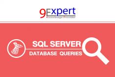 อบรม SQL Query
